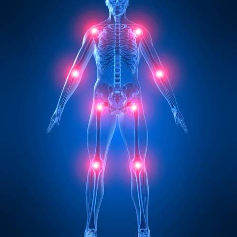 dureri articulare pelvine încărcături sportive pentru bolile articulare