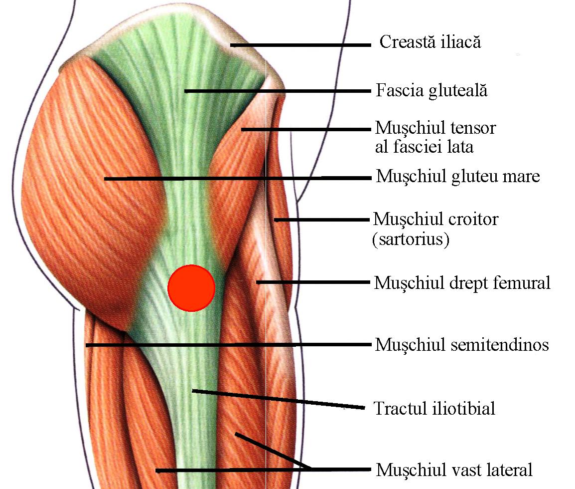 răni și zdrobi articulațiile umărului ce trebuie făcut