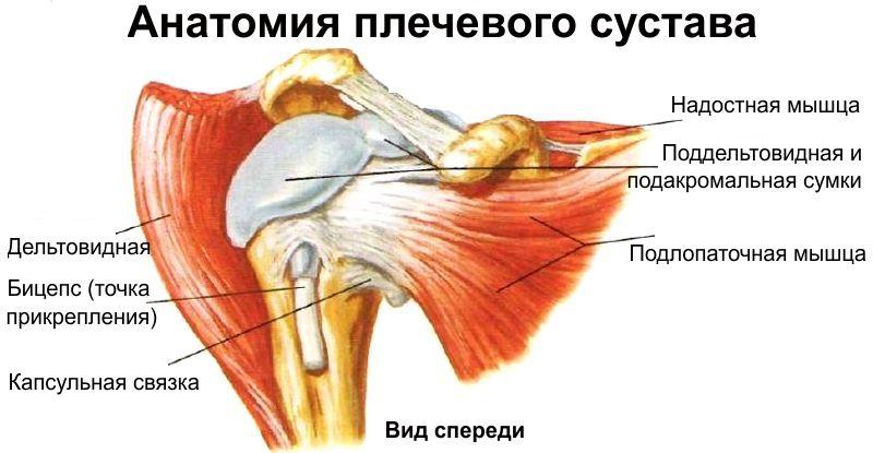 deteriorarea mușchiului de rotație a articulației umărului dureri articulare așa cum se manifestă