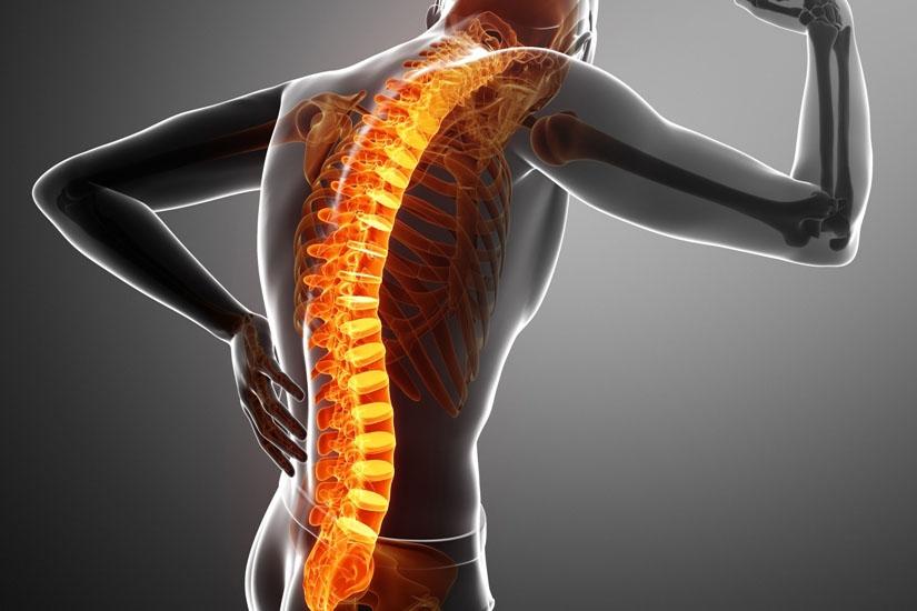 durere la nivelul articulațiilor musculare ale coloanei vertebrale