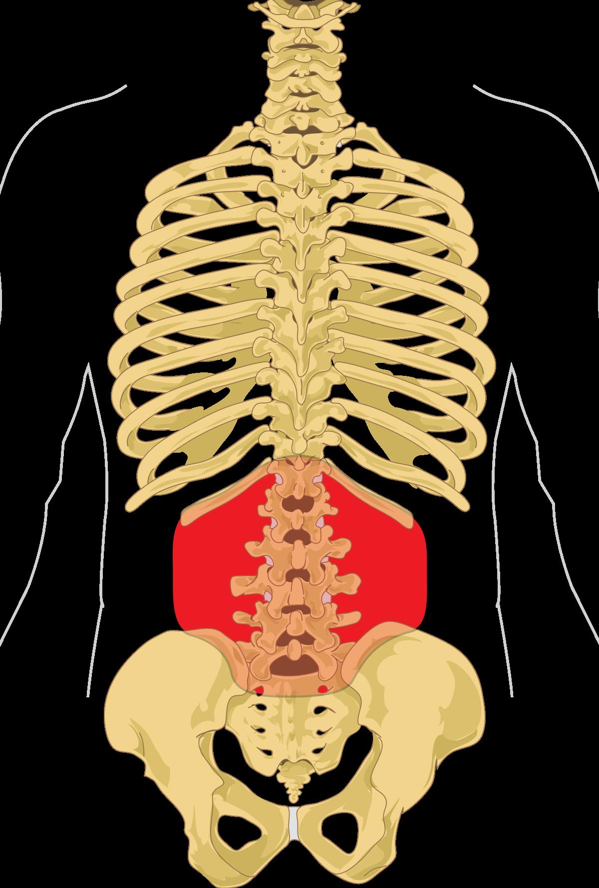 AINS în tratamentul artrozei