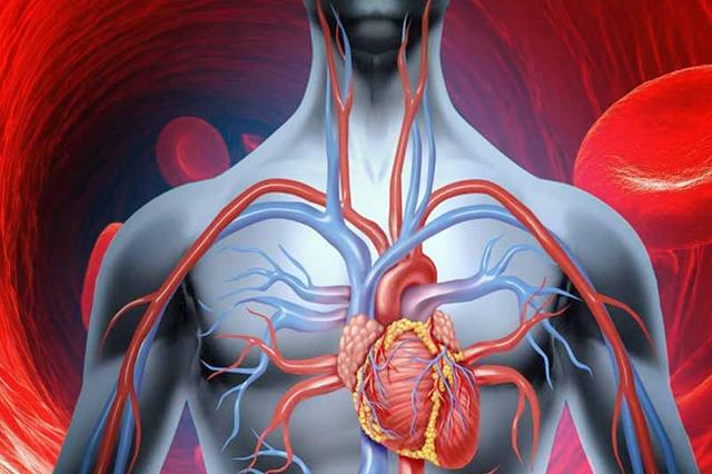 medicamente pentru a îmbunătăți circulația sângelui comun