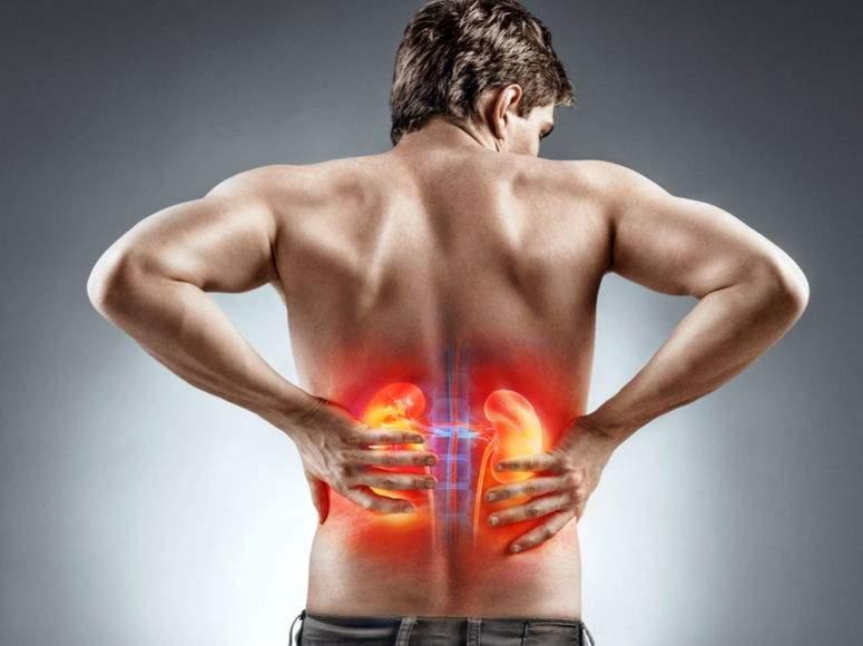 dureri la nivelul articulațiilor rinichilor