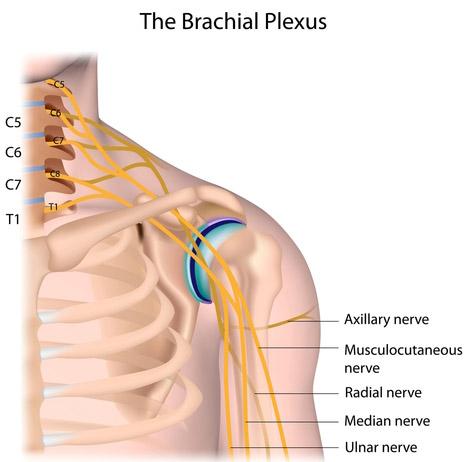 tratamentul unui nerv strâns în articulația cotului