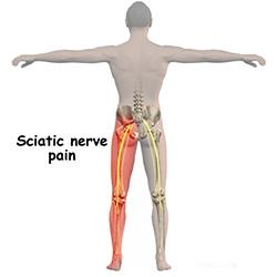 articulațiile picioarelor și ale spatelui