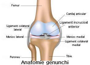 accidentarea ligamentului la genunchi