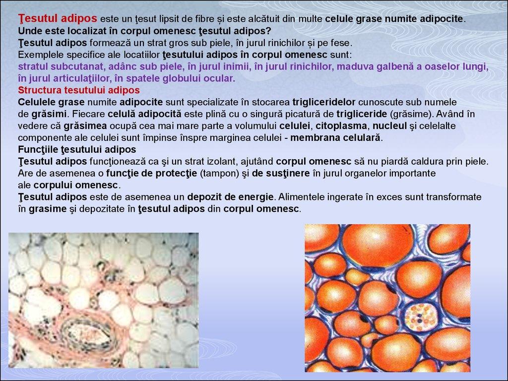 unguente în tratamentul artrozei tratamentul eficient al artrozei și artritei