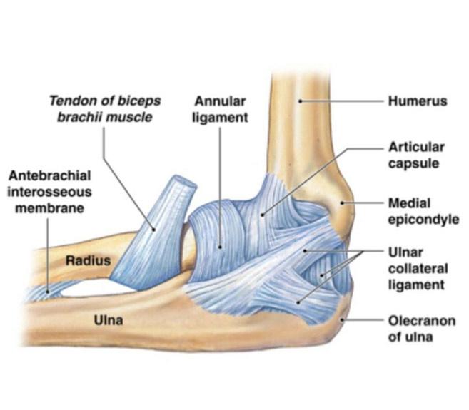 inflamația articulației degetului mare