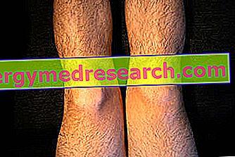 boală fluidă la genunchi copilul are dureri în articulațiile picioarelor