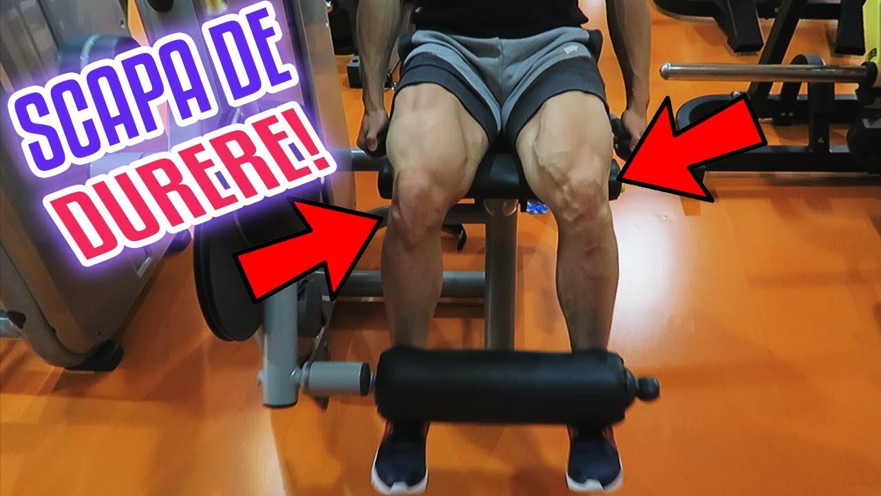 dureri de genunchi cartilaj