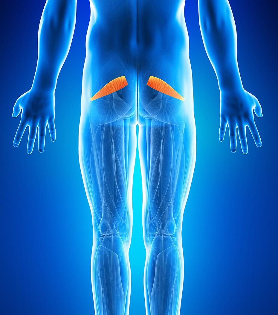 durere la femurul stâng la mers dureri articulare jurnal coloană vertebrală