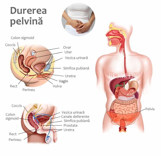 dureri articulare ovariene