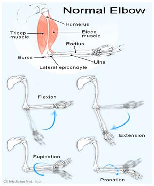 medicamente utilizate pentru tratarea osteochondrozei
