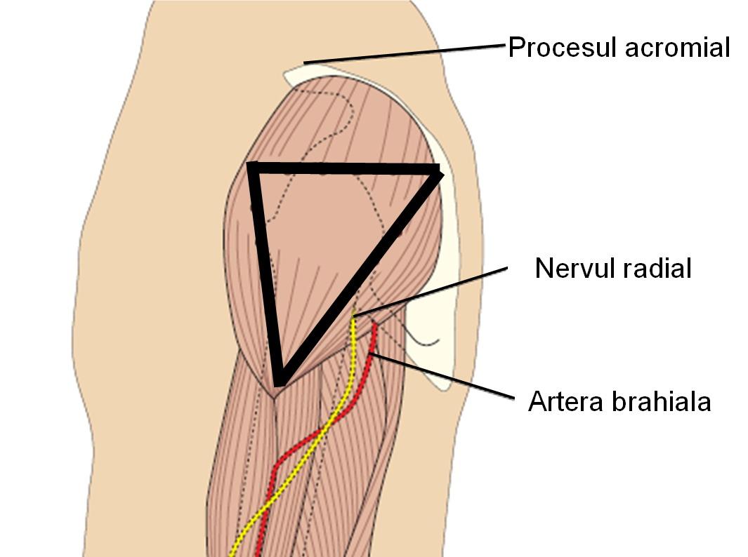 dureri de picioare după o injecție în articulație