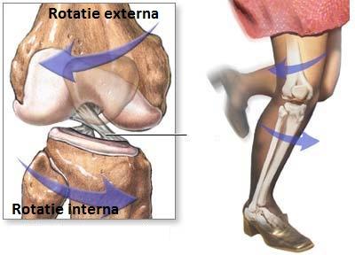 raport asupra leziunilor la genunchi