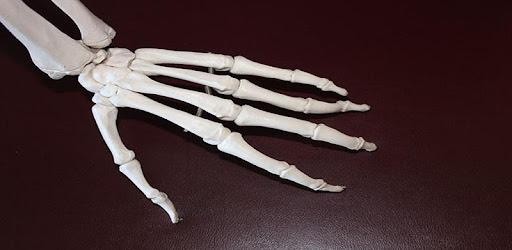 umflarea articulațiilor de pe picioare polifenpan pentru boala articulară