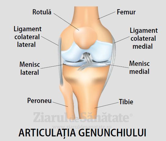 unde tratează articulațiile genunchiului