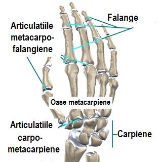 poate îmbina articulațiile sub presiune tratament cu ozokerită la genunchi