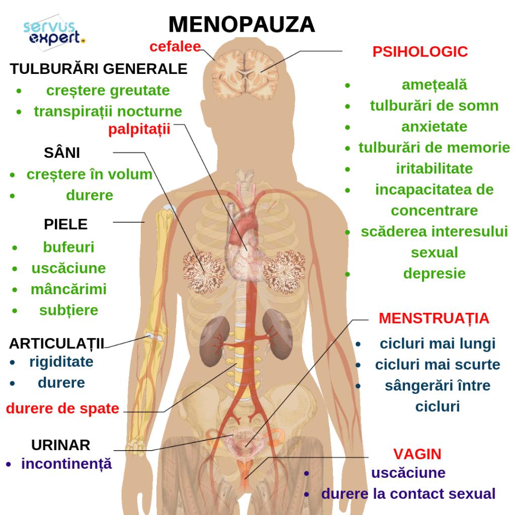 dureri articulare perimenopauza cauze ale inflamației ligamentelor genunchiului