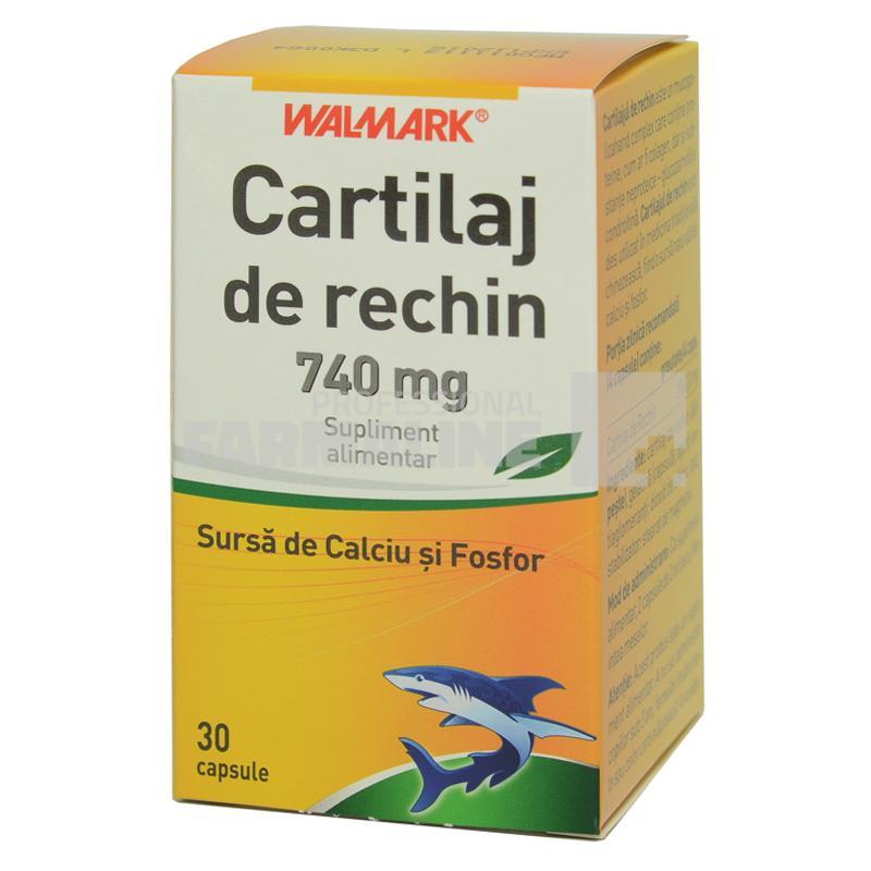 medicament pentru rechini pentru articulații
