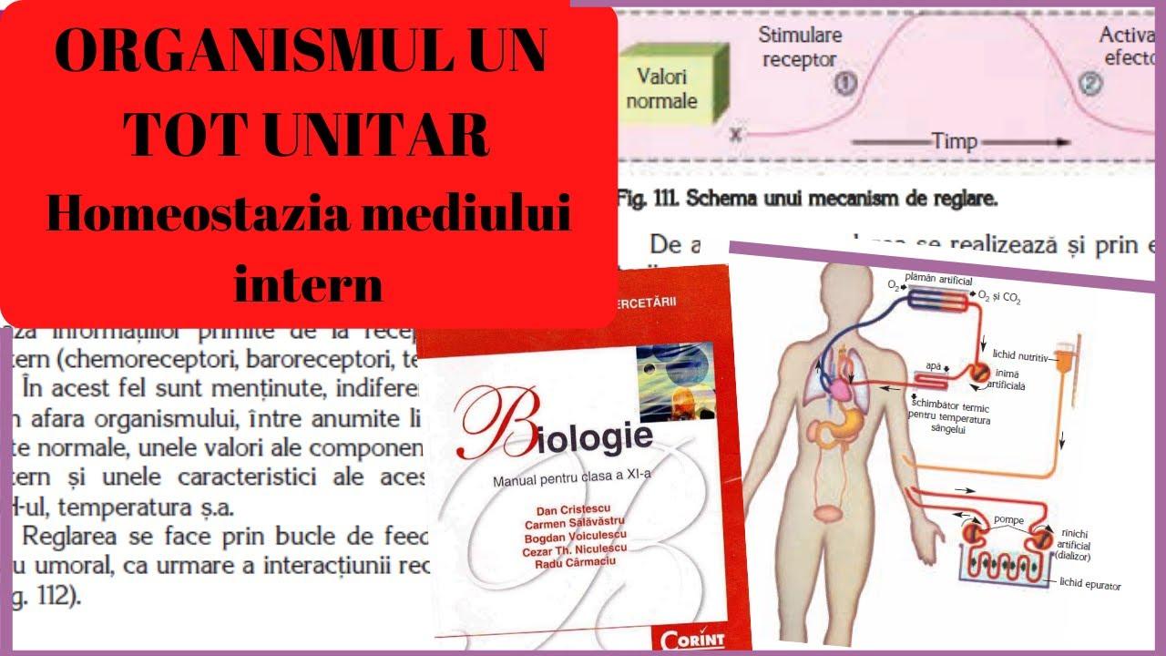 țesutul cartilaginos se referă la țesutul conjunctiv tratament de contrast al artritei și artrozei