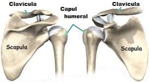 osteocondroza istoricului cazului articulației umărului durerea de spate inferioară este dată articulației șoldului