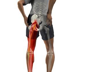 articulațiile șoldului cu întindere tratamentul bioptron al artrozei genunchiului