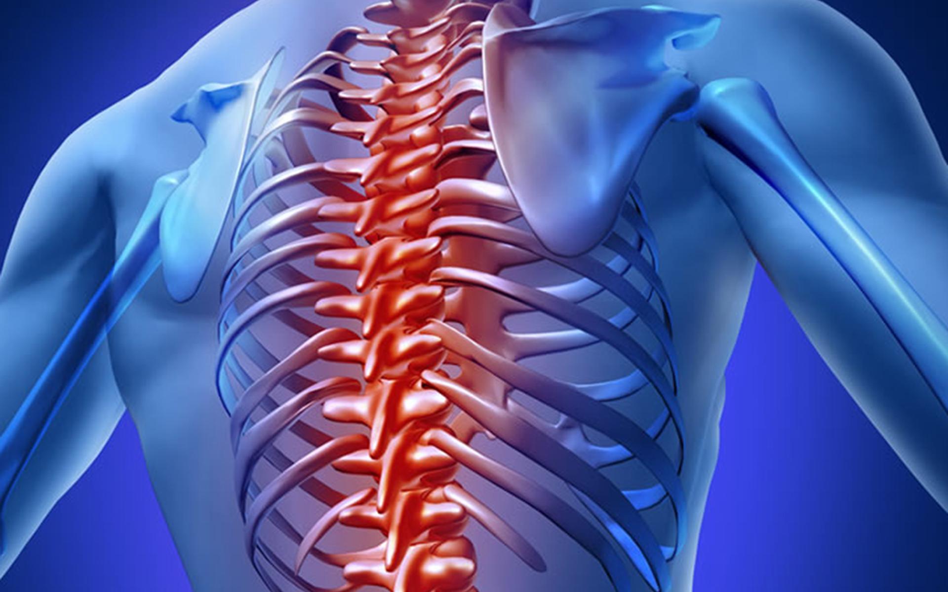 dureri articulare jurnal coloană vertebrală