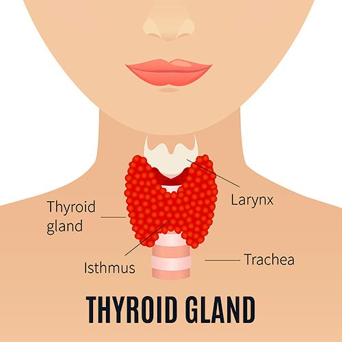 dureri articulare cu hipotiroidism