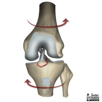 consecința unei leziuni la genunchi tratament comun Artemovsk