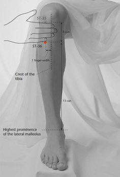 unguente pentru ruperea ligamentelor articulației genunchiului fisurile articulare în tratamentul articulațiilor șoldului